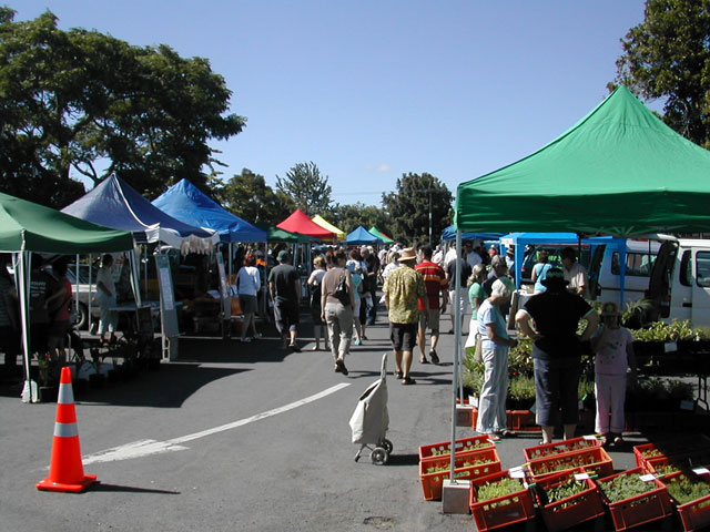 Sunday Farmers market